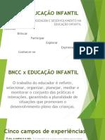 Sobre BNCC e Ed. Infantil