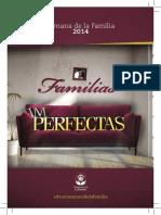 Sermonario- Familias Im-Perfectas 2014