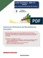 Tema II (2)  MER 123 .Prof R.Bisonó