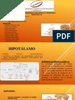 Hormonas hipofisiaria bioquimica