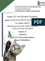 U2_PRACTICA09_QueNumeroVio_17isc077