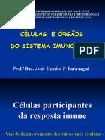 Aula 02 Celulas e Orgaos2