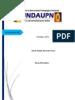 Informe normas APA