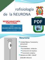 03b SNC Neurona 210419