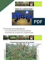 Introducción a La Micolselvicultura y Al Cultivo de Setas