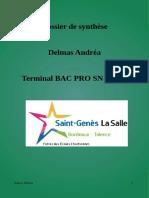 Dossier de Synthèse Andréa
