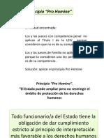 Principio pro homine.Lic.AlbaEvelyndeAlvarenga.29.junio.12 (1)