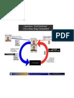 Ice Cream Oxy Ring Organizational Chart