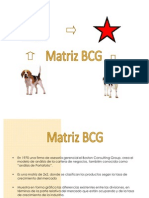 matrizbcg-090822160905-phpapp01