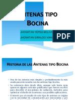 antenastipobocina-EXPOCICION