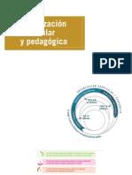 organizcion curricular y pedagogica