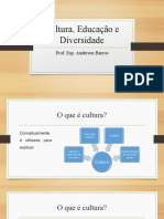 Aula 1 - Cultura e Educação