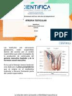 Varicocele - Atrofia Testicular Listo (1) (1)