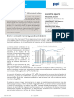 Informe PPI