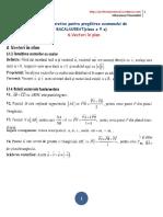 Teoriebac 6 Vectori c3aen Planteorie1