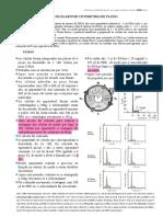 protocolo ciclo celular