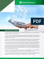 Gesto Financeira - Administrao Financeira SSE