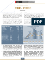 RCB Chile - Anual 2020