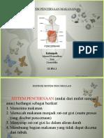 Sistem Pencernaan Pada Manusia (11 IPA 2) MAN 6 Jakarta