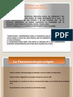 La FenomenologíaYBR 1