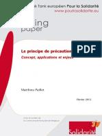 wp_-le_principe_de_precaution