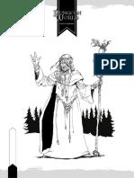 DW_druide