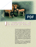 19_16_49_trazabilidad_carne_bovino