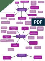 Mapa mental Administração