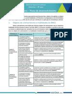 17_HIST_DOC_9ANO_3BIM_Plano_de_desenvolvimento_TRT