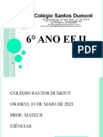 6°Ano EF II  SD  31-05