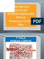 HABEAS CORPUS 2020.2 AULA REMOTA
