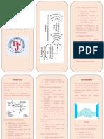 tarea de lenguaje de fonemas