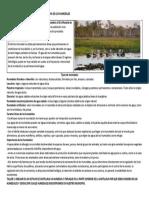 DIA DE LOS HUMEDALES-2-FEBRERO-2021