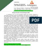 PORTFÓLIO 1º SEMESTRE ACE 2021 - O Caso de Duas Empresas de Construção Civil