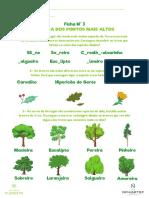 Dmf Ficha 3 a Flora Dos Pontos Mais Altos