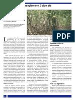 Conservacion de Manglares en Colombia