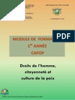 Droits de l'Homme Citoyenneté Et Culture de La Paix