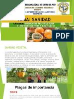Granadilla-SANIDAD