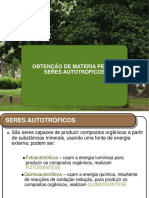 Fotossíntese 1