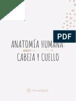 Anatomía Humana_ Cabeza y Cuello Tomo I