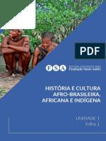 [EAD01_20] U1T1 - História e Cultura Afro-brasileira, Africana e Indígena
