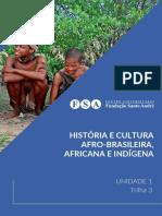 [EAD01_20] U1T3 - História e Cultura Afro-brasileira, Africana e Indígena