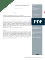 v12-Bioestimuladores-e-seus-mecanismos-de-acao