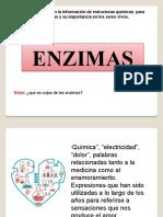 2021 proteinas - enzimas