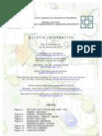 Boletín del CAAP Nº 2 de 2011