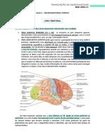 05 - Mapa de Brodmann e Circuito Emocional de Papez