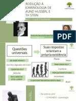 INTRODUÇÃO À FENOMENOLOGIA - PROFª Maria Cecilia Isatto Parise.(1)