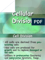 ( GENETICS ) Cell Cycle & Cell Division