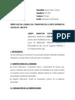 SUBSANACION_DEMANDA_ANULABILIDAD