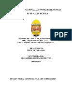 informe de practica área de calidad